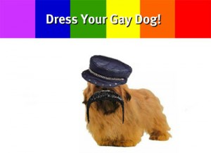 dress_your_gay_dog